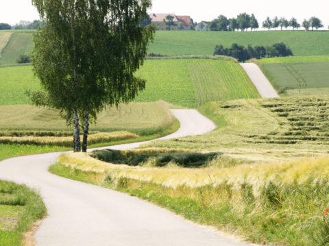 Online-Emmaus-Weg in unserer Pfarrei 15