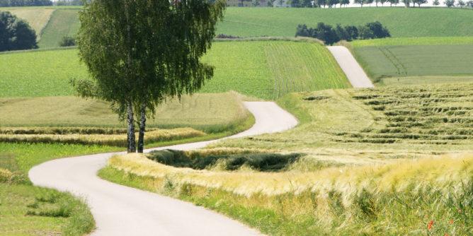 Online-Emmaus-Weg in unserer Pfarrei 1